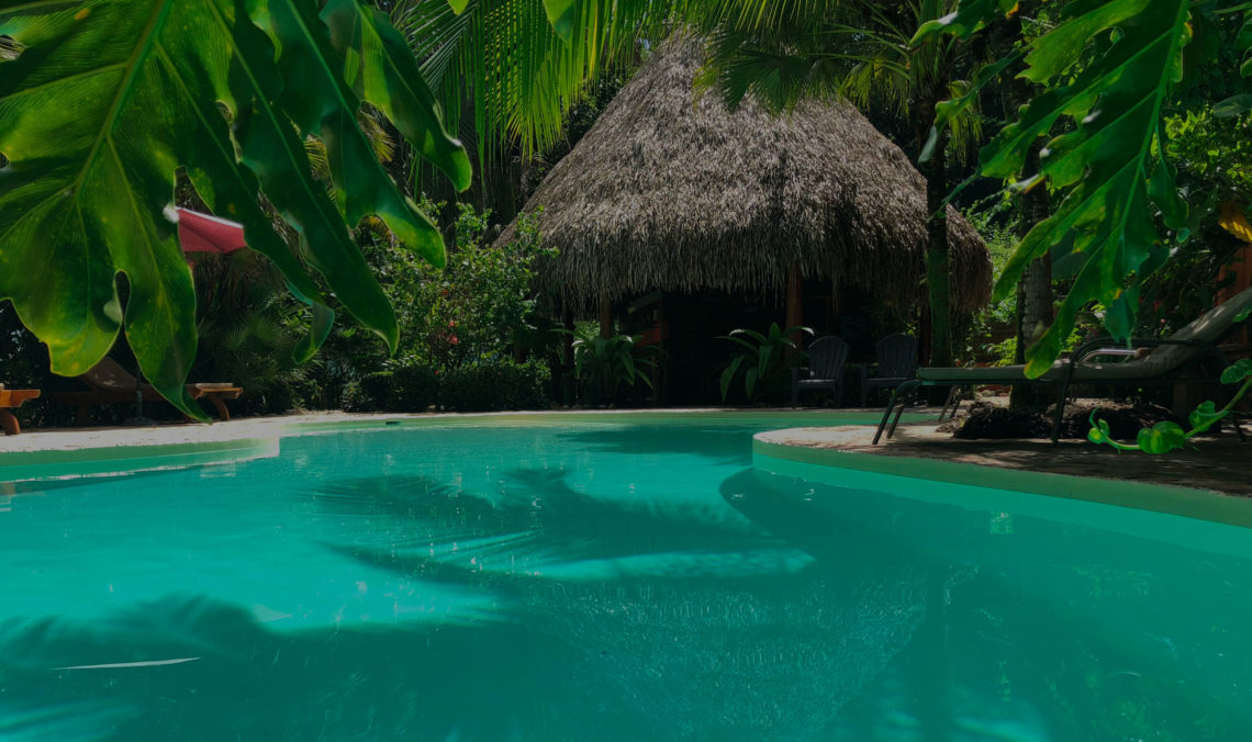 Ecolodge costa rica piscine